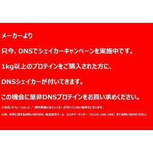 DNS ホエイプロテインスーパープレミアム/ヨーグルト風味