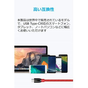 Anker PowerLine+ USB-C & USB-A 3.0 ケーブル (0.9m レッド)...