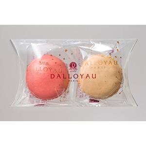 DALLOYAU ダロワイヨ マカロン (2ヶ詰)