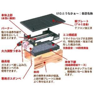 無煙コンロ けむとうなかぁ? 専用網プレート(大) 網 鉄板 プレート コンロ カセットコンロ ボンベ 焼肉 バーベキュー アウトドア レジ lucia0322