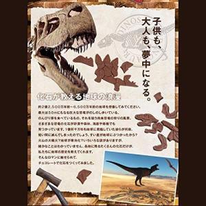 バレンタイン恐竜のチョコレート ジュラシックショコラ ジグソーパズル(ティラノサウルス) 恐竜 おも...