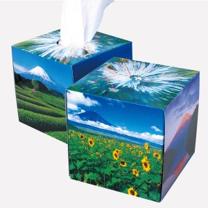 ティッシュペーパー 富士山 サイコロ型 BOXティッシュ 70W 50個販売 7171 山頂から取り出せる 東西南北の風景写真 ※商品代引不可|lucky-merci