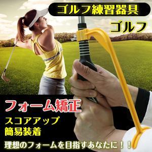 スイング練習器具 ゴルフ練習器具 ゴルフ スイング 補助器 姿勢 矯正 ゴルフ用品 ウォームアップ トレーニング ad093|lucky9
