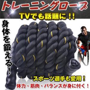 トレーニングロープ ジムロープ ロープ 縄 ダイエット 体幹 エクササイズ 筋トレ 縄跳び de038|lucky9