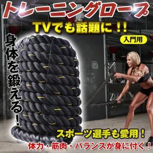 トレーニングロープ 入門 ジム 縄 スポーツ ダイエット 体幹 エクササイズ 筋トレ  なわとび  de039|lucky9