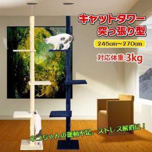 キャットタワー 突っ張り おしゃれ スリム 安定感 270cm つっぱり 大型 猫タワー ねこ pt031|lucky9