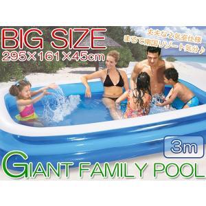 プール ビニールプール 家庭用 ファミリープール 大型 3M 2気室 ###プール0291-2NPF###|luckycraft-sp