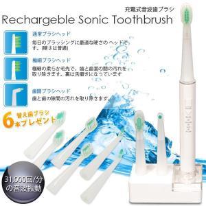 充電式歯ブラシ 電動歯ブラシ 音波歯ブラシ 今なら替え歯ブラシ6本プレゼント###歯ブラシ2062### luckycraft-sp