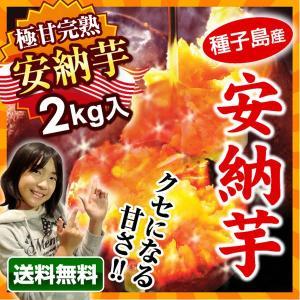安納芋 種子島 産地直送 蜜芋 (2kg) サツマイモ 夢百...