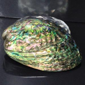 アバロンシェル 貝殻 パウア貝 パウアシェル さざれ 皿 浄化セット 厳選 一点物