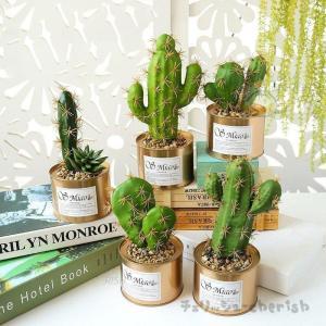 人工観葉植物 サボテン フェイクグリーン ポット 造花 多肉植物 5種類