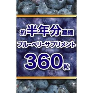 ブルーベリー サプリメント 約半年分濃縮ブルーベリーサプリメント 360粒|lunabeauty