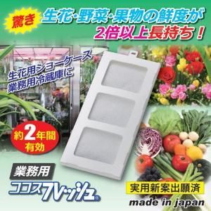 活性炭 冷蔵庫 野菜 鮮度 保持 ココスフレッシュ業務用|lunabeauty
