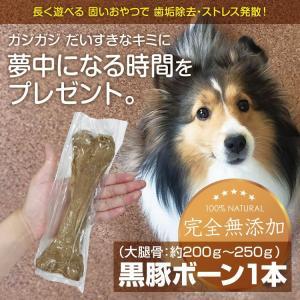 黒豚(大腿骨)ボーン1本 無添加  国産 歯石・歯垢除去 長持ち ストレス発散 大腿骨 小型犬 中型犬 大型犬 アレルギー|lune-shop
