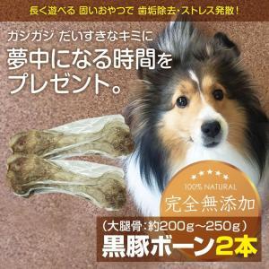 黒豚(大腿骨)ボーン2本 無添加  国産 歯石・歯垢除去 長持ち ストレス発散 大腿骨 小型犬 中型犬 大型犬 アレルギー|lune-shop