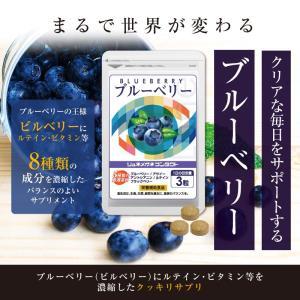 ブルーベリー ・ ルテイン ・ ビタミンB12.B1.B6配合。(90粒入/1袋 約1ヵ月分) コンタクトや眼鏡の方に。パソコンやスマホの使用が多い方。 lune-shop 02