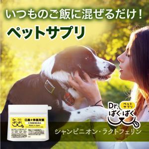 Dr.ぱくぱく  犬用サプリメント 送料無料  小型犬〜大型犬まで 犬用健康補助食品 完全国内産 無...