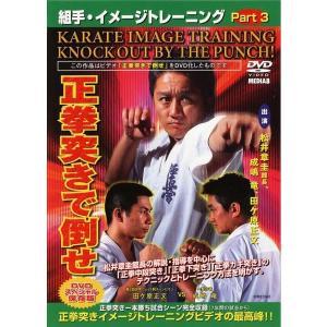 組手・イメージトレーニングPart.3  正拳突きで倒せ [DVD]