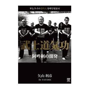 矢山利彦 武士道気功 [DVD]|lutadorfight