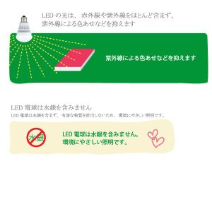LED電球 昼白色 GREEN HOUSE グリーンハウス GH-LB603N|lvx200807|03