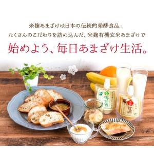 甘酒 米麹 砂糖不使用 有機玄米 あまざけ 150g×2個 送料無料 ノンアル コール|lwhana|15