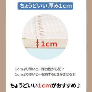 (ただいま年末セール中) プレイマット 折りたたみ 195×147cm リバーシブル マット ベビーマット キッズマット かわいい 大判 軽量 防水 LS-BMAT02|lysin|14