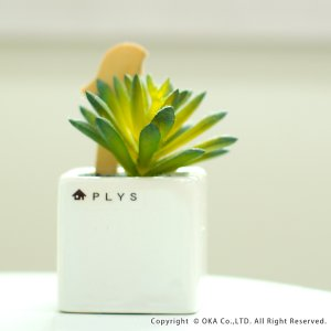 PLYS green(プリスグリーン) プリスグリーン フェイクグリーン 多肉 小さめ 新生活|m-rug|02
