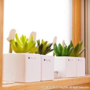 PLYS green(プリスグリーン) プリスグリーン フェイクグリーン 多肉 小さめ 新生活|m-rug|03