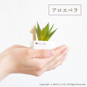 PLYS green(プリスグリーン) プリスグリーン フェイクグリーン 多肉 小さめ 新生活|m-rug|05