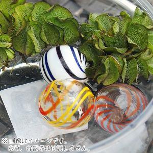 (アクアリウム) 浮き玉 ガラス製 3種セット アクセサリー 浮き球 ビオトープ 鉢 メダカ