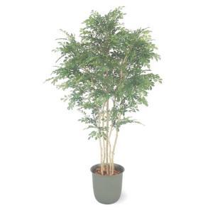 人工植物 トネリコ 立木 5本立 鉢付 1.8m 室内用 |m1shop