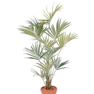 人工植物 ニューケンチャヤシ 鉢付 2.1m 室内用 |m1shop