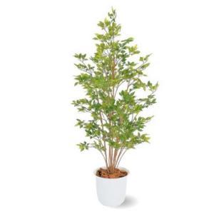 人工植物 ベンジャミン グリーン 鉢付 1.5m 室内用 |m1shop