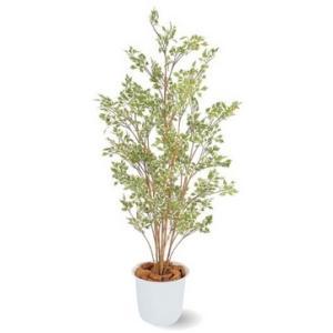 人工植物 ベンジャミン ハワイアン 鉢付 1.5m 室内用 |m1shop