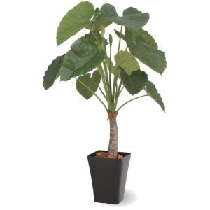 人工植物 クワズイモ 1.2m 室内用 |m1shop