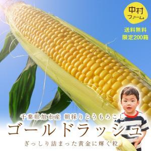 トウモロコシ 「産直野菜」千葉県産 中村さん家のとうもろこし...