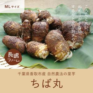 里芋 産直 ちば丸 5kg (LMサイズ)