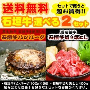 (送料無料)石垣牛ハンバーグ&切り落とし 選べる2個セット maasanichi