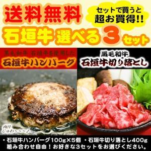 (送料無料)石垣牛ハンバーグ&切り落とし 選べる3個セット maasanichi
