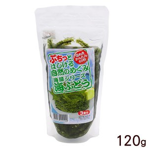 海ぶどう 塩水漬け 120g|maasanichi