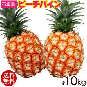 石垣島産 ピーチパイン 約10kg (12玉〜16玉)(送料無料)沖縄産パイナップル maasanichi