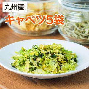 乾燥野菜 キャベツ 5個セット 国産野菜  保存野菜 maborosiya
