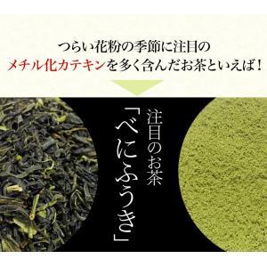 べにふうき茶 粉末緑茶 50g 100杯分 大分県産 maborosiya 02