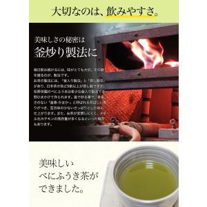 べにふうき茶 粉末緑茶 50g 100杯分 大分県産 maborosiya 04