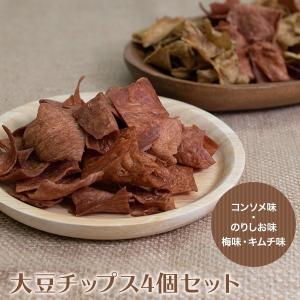 大豆チップス 40g×4袋セット 高プロテイン 低糖質 ダイエット