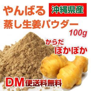 やんばる生姜粉末 100g 蒸し 生姜 パウダー 沖縄県産 国産 生姜 パウダー 粉末 しょうが DM便送料無料