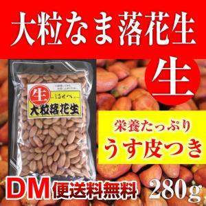 大粒 生 落花生 280g ピーナッツ 殻なし DM便送料無料