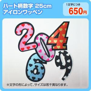 アイロンワッペン カラフルハート柄(数字25cm)|maccut