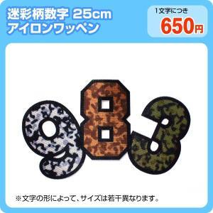 アイロンワッペン カラフル迷彩柄(数字25cm)|maccut