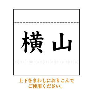 相撲ゼッケン(まわし折り込みタイプ) W25cm×H25cm
